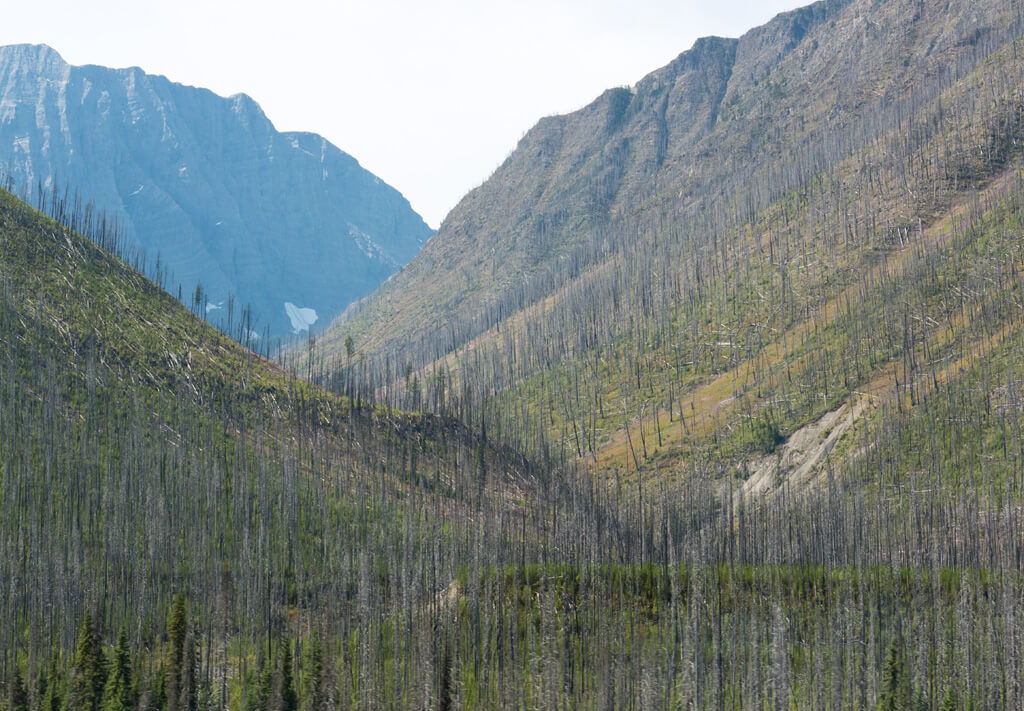 Kootenay National Park, Canada wildfires