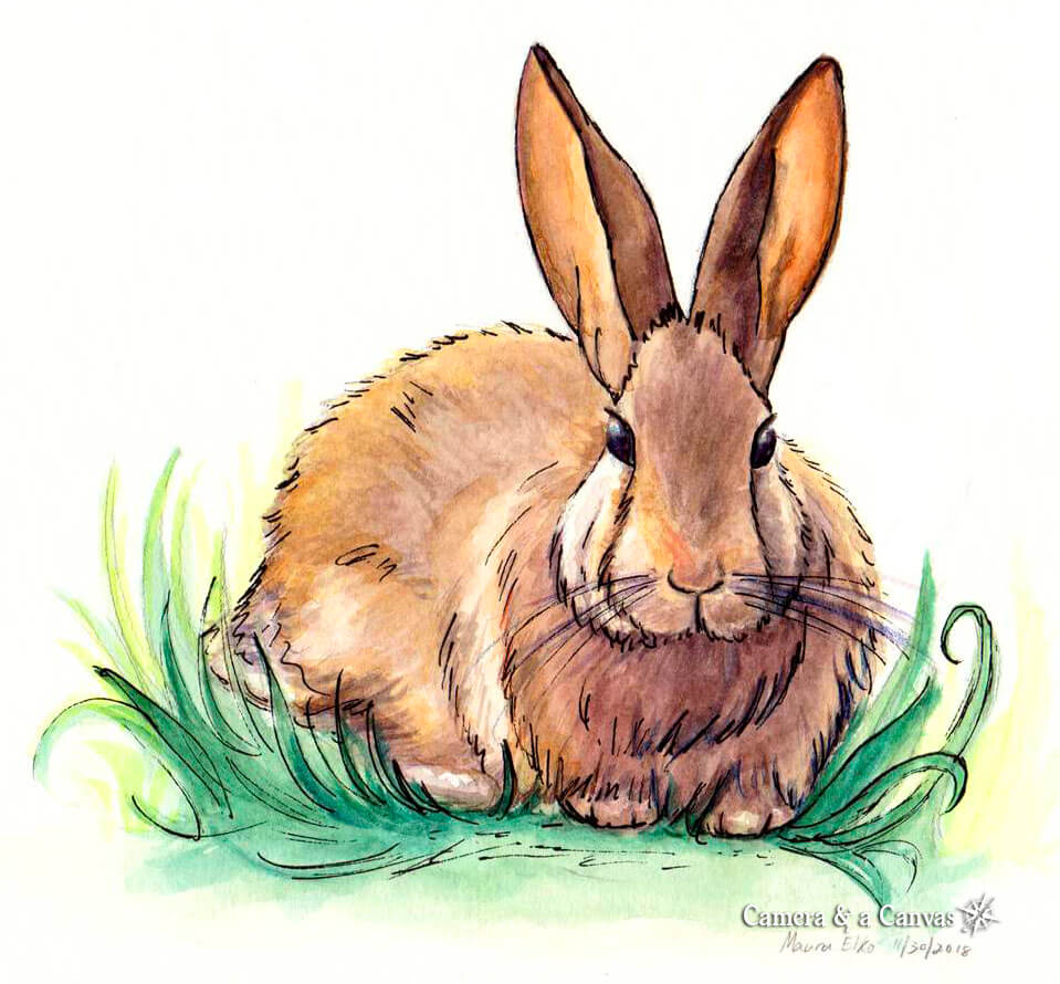 watercolor bunny rabbit painting