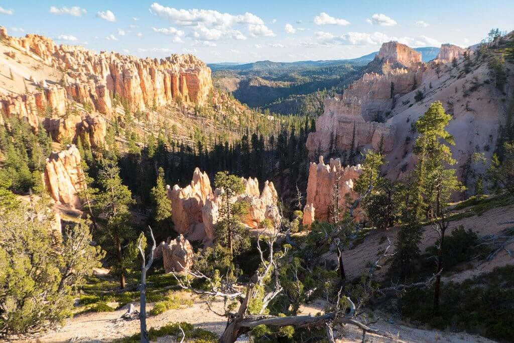 Swamp Canyon in Bryce National Park