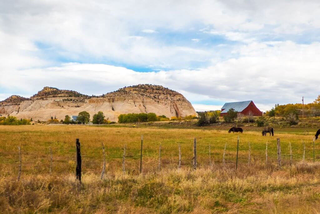 Barn with horses in Utah