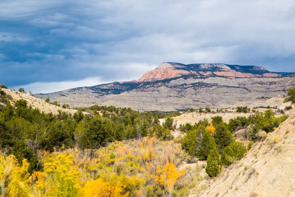 Pink mountain in background, pine trees, and yellow fall foliate in forground, Utah